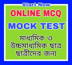 Online Mcq Mock Test